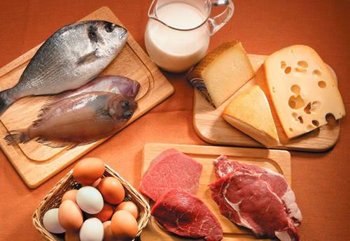 Dieta das proteína Dieta das proteínas